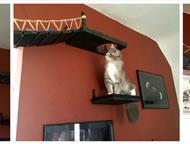 Челябинск: Полки, домики, когтеточка, комплексы для кошек Делаем уникальное обустройство для кошек любой сложности от полки с когтеточкой до комплекса с мягкими,