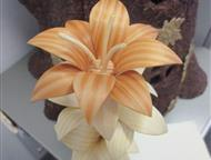 Сувенирные цветы Все сделано из дерева. Лиственница, сосна, кора кедра. Пропитаны льняным маслом, Красноярск - Выставки, галереи